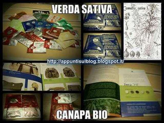 Verdesativa Canapa Bio, benessere dalla canapa 1 crema alla canapa