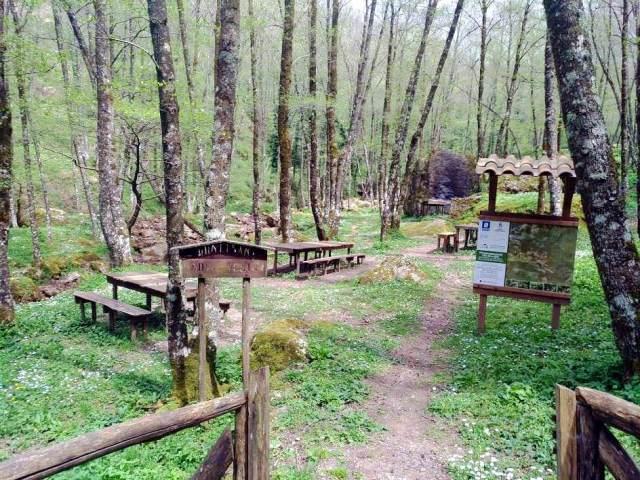 Monte Gelbison e Vallo della Lucania 9 #viaggi
