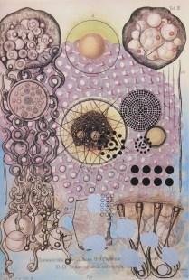 Radiolaria #6, 2007; Inkjet, screenprint, painting; Image: 20 x 13 inches