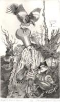 Knight, Bird, Burin, 2006; Engraving; Image: 451 mm x 591 mm