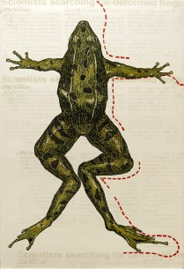Leopard Frog I, 1997; Woodcut; Object size: 40 x 26 inches