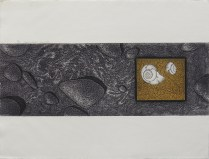 Canyon Shells, 2000; Lithograph, Etching; Object size: 284 x 379 mm
