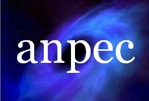 Um apanhado de informações sobre o Exame ANPEC