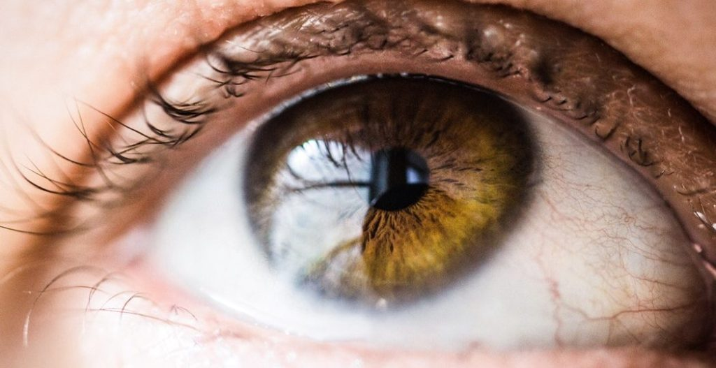 Como funciona um Eye Tracker 1