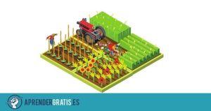 Aprender Gratis | Manuales de permacultura, biocultivos y agricultura ecológica