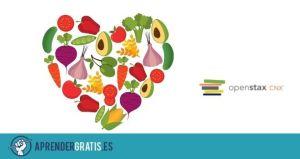 Aprender Gratis | Curso sobre seguridad alimentaria