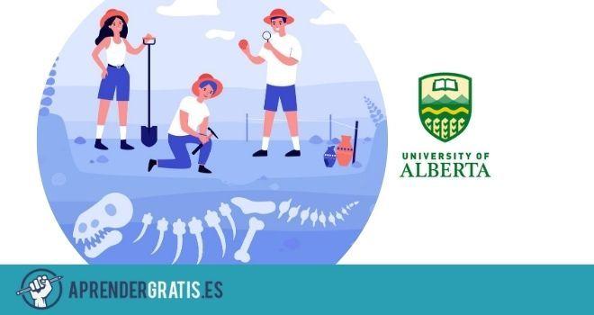 Aprender Gratis | Curso sobre dinosaurios terópodos y el origen de las aves