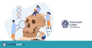 Aprender Gratis | Curso sobre osteoarqueología: estudio de huesos