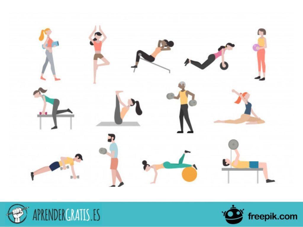 Curso sobre nutrición y dietética para el ejercicio físico