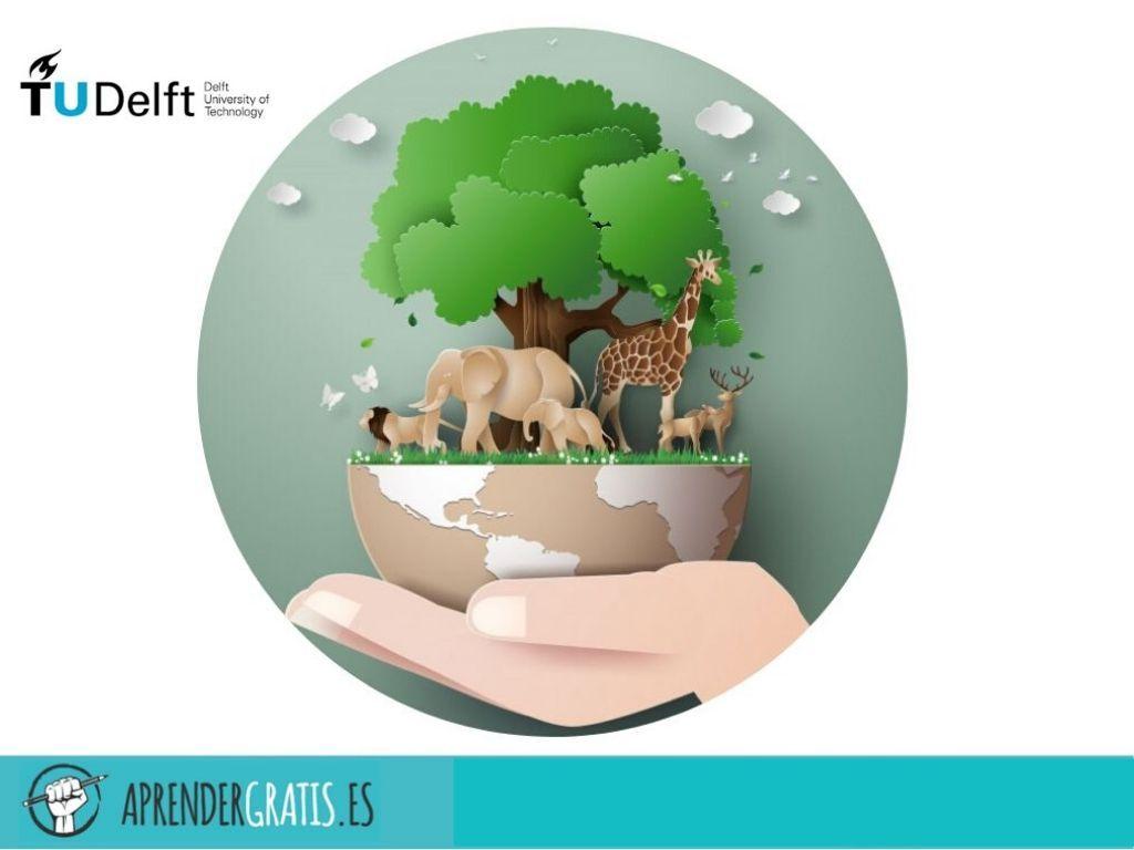 Aprender Gratis | Curso sobre la tierra y sus recursos