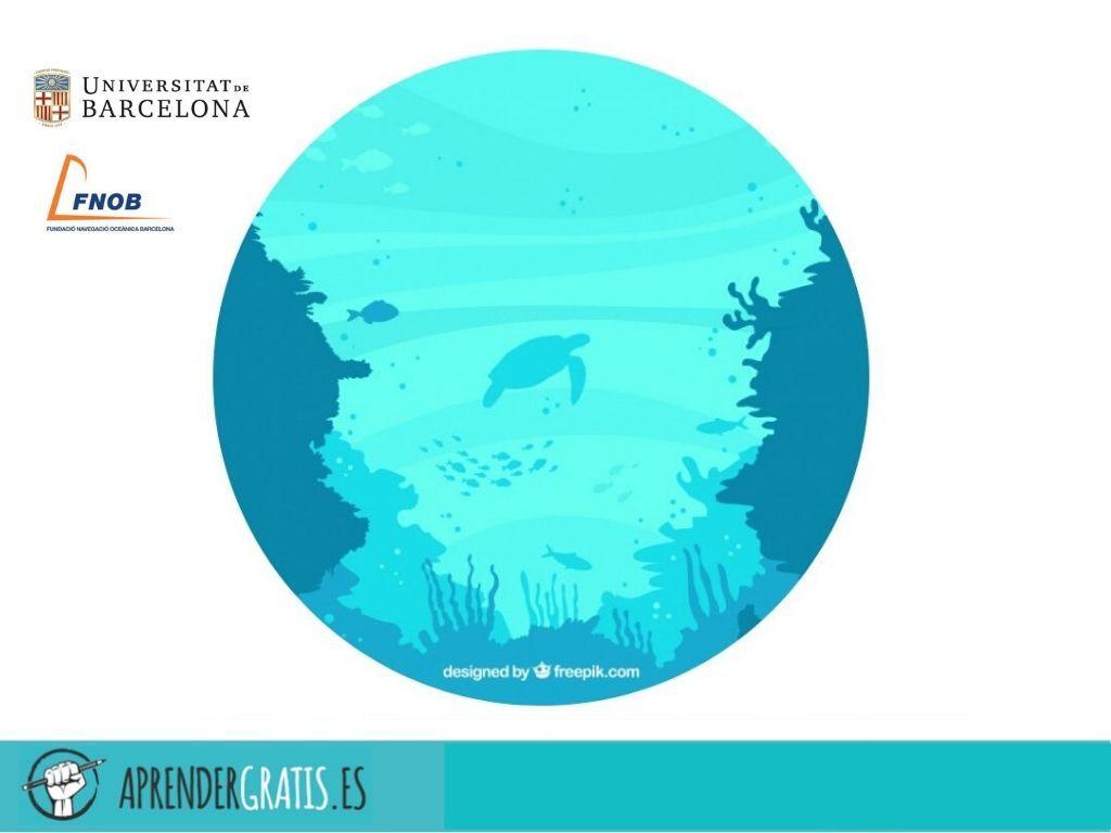 Aprender Gratis | Curso sobre las claves de la Oceanografía