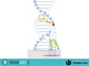 Aprender Gratis | Curso sobre los conceptos básicos de la Bioquímica