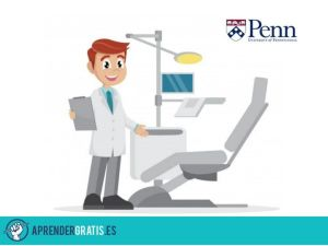 Aprender Gratis | Curso de introducción a la odontología