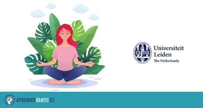 Aprender Gratis | Curso mindfulness y la desmintificación de la atención plena