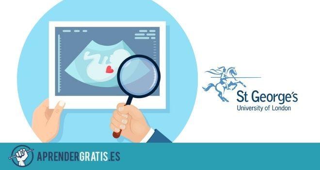 Aprender Gratis | Curso sobre test prenatal no invasivo