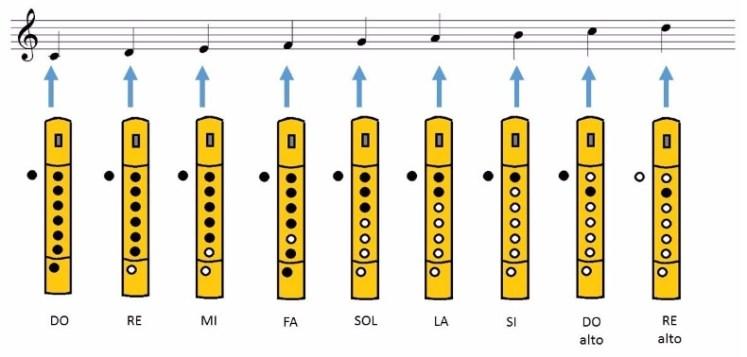 notas flauta escala de do.jpg