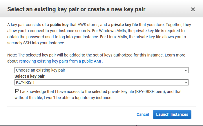 Mover Instancia EC2 a otra zona de disponibilidad - key pair