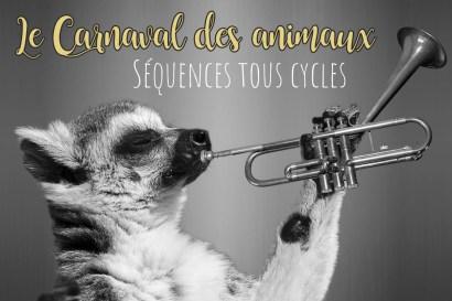 Séquence tous cycles Carnaval des animaux