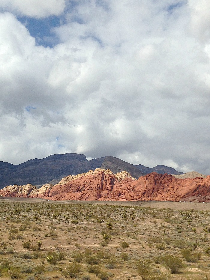 Vertical View - Red Rock Canyon panoramic view