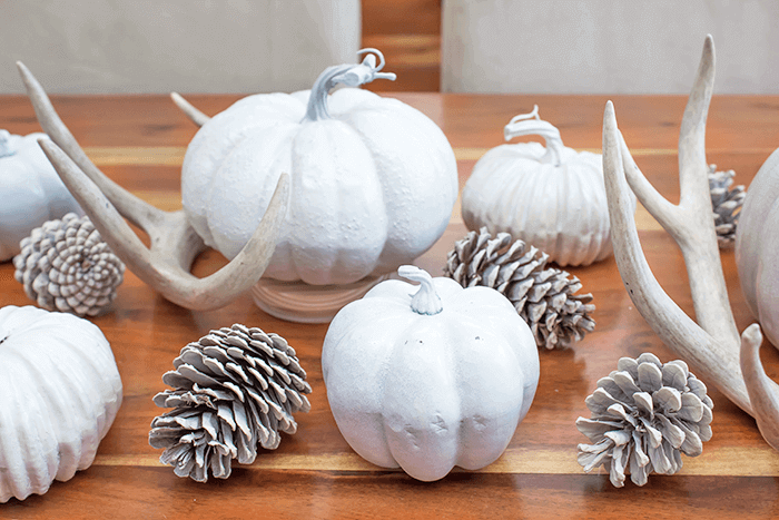 chic and rustic farmhouse decor for fall | neutral palette | natural elements