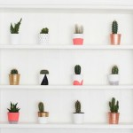 20 DIY Mini Painted Pots - featured image