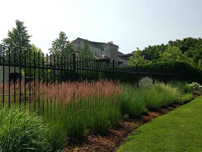 Tawse Winery - grasses