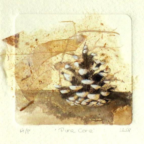pinecone watercolour