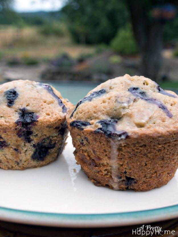blueberryzucchini2