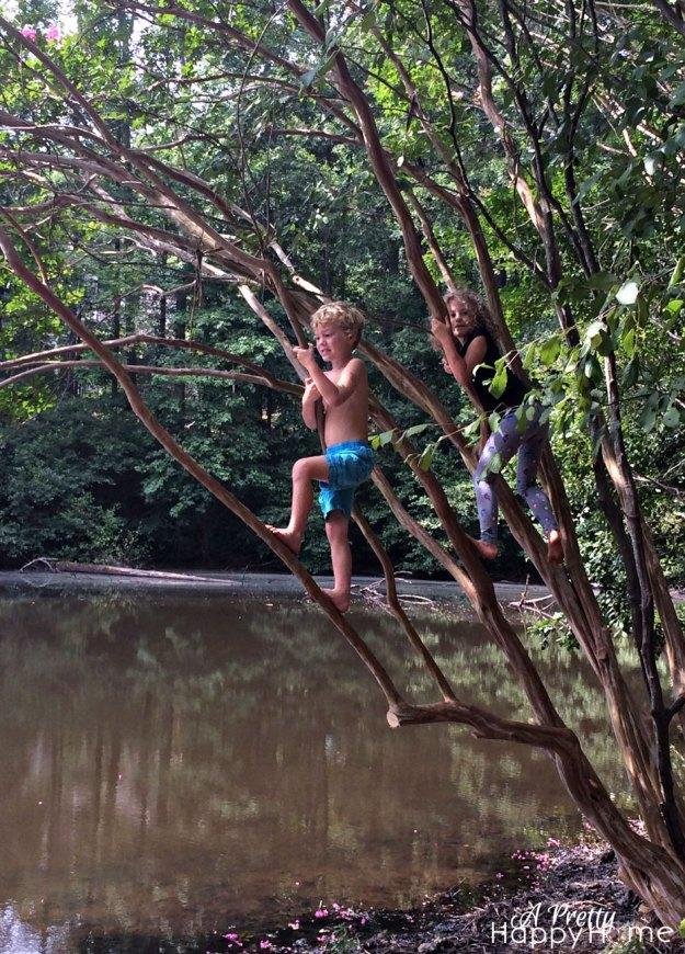 2015_8_21-kids-tree-climbing