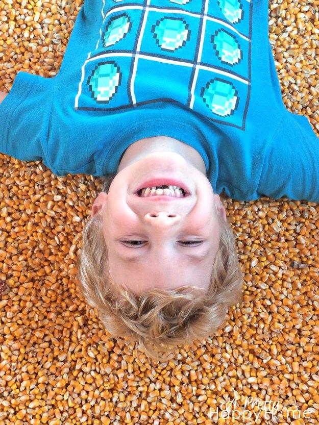 pumpkinpatch2015_4