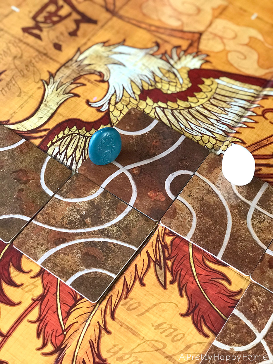 board games Tsuro play shot