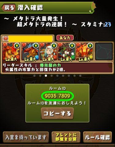 pazudorakyouryoku03 (1)