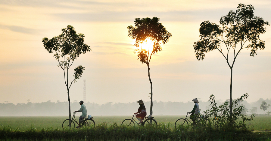 Top 10 Things You Probably Didn't Know About Vietnam