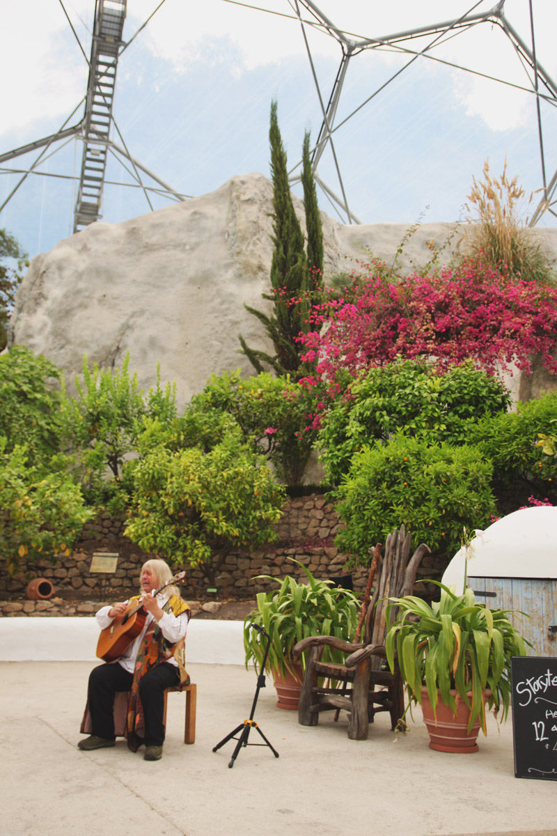 Eden Project - Mediterranean Biome