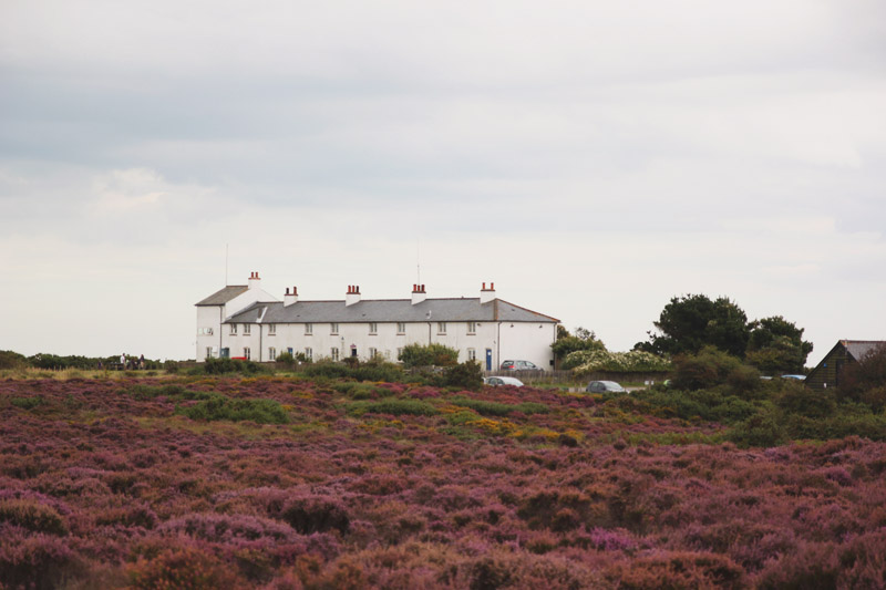 Dunwich Heath