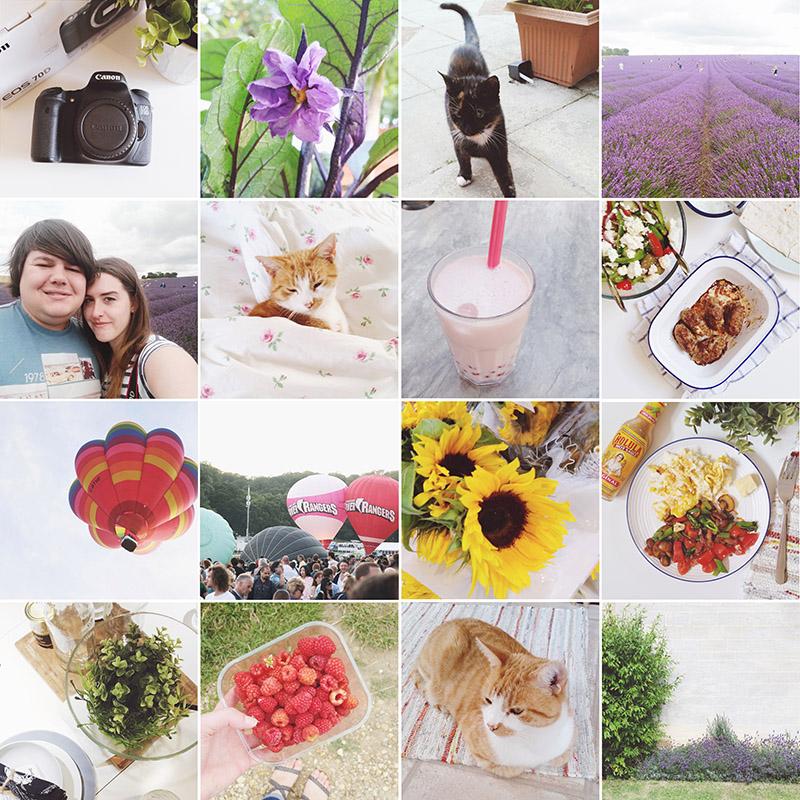 August 2015 Instagram