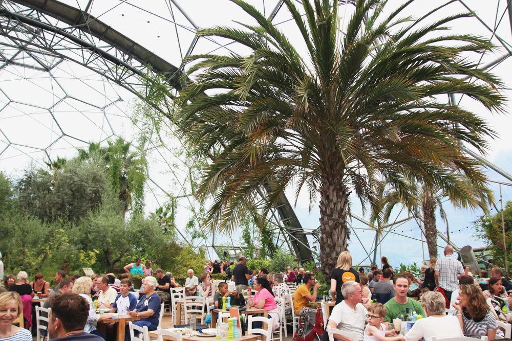 The Mediterranean Biome, The Eden Project