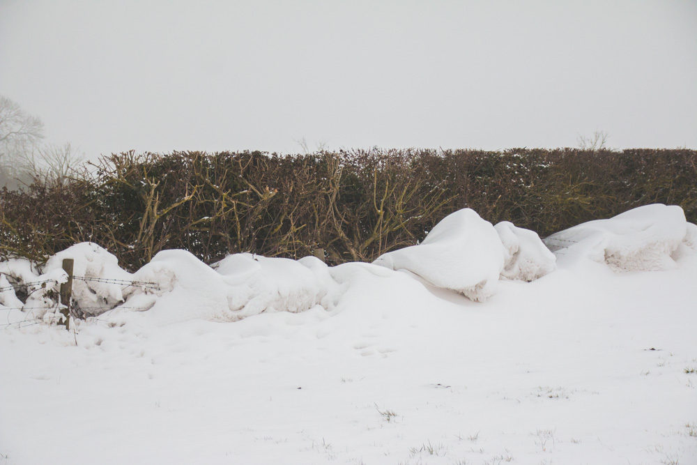 The Beast From the East Snow Drifts
