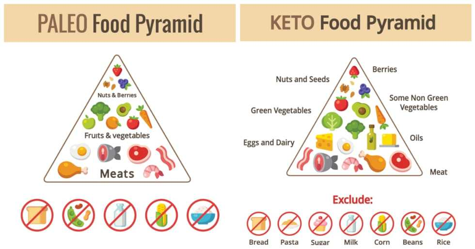 Paleo Vs Keto: Aren't They The Same?