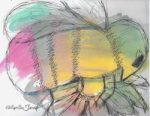 May 12 BumbleBee