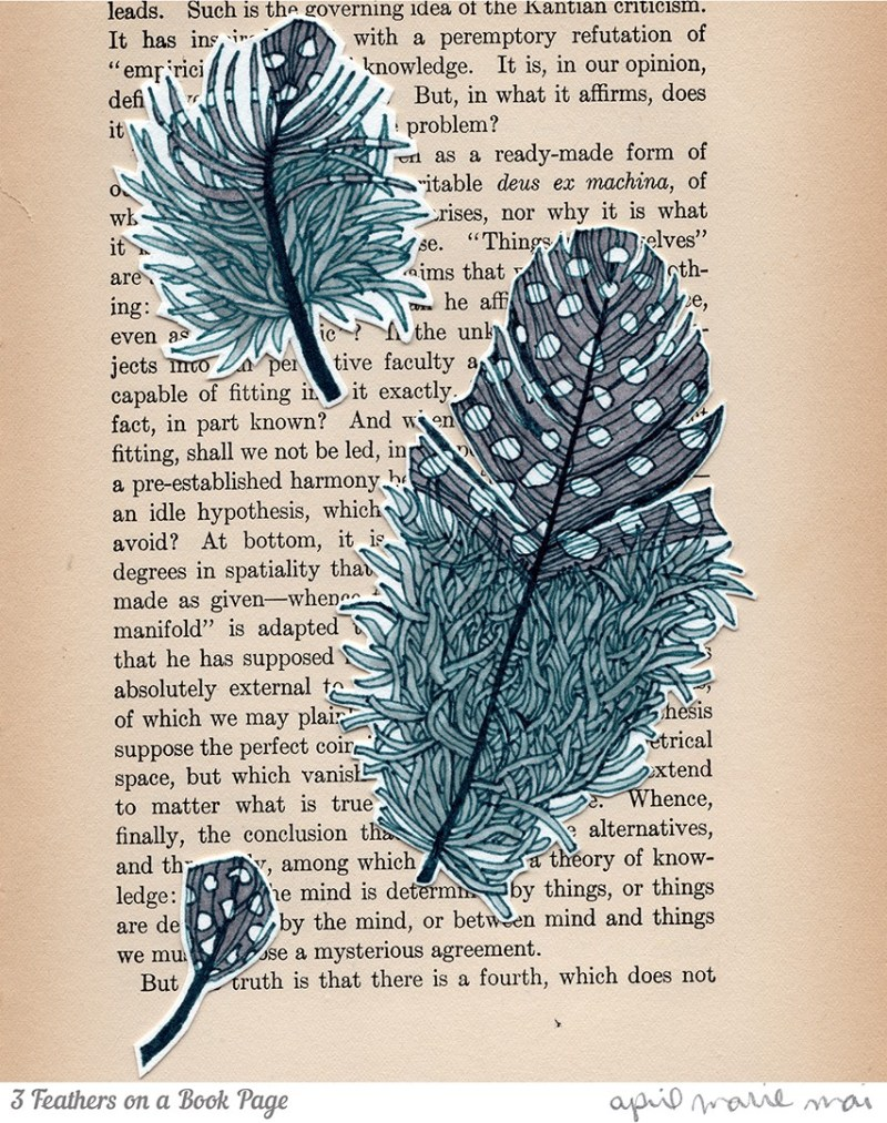 3 Feathers on a Book Page Print
