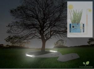 emergence- tree-plot