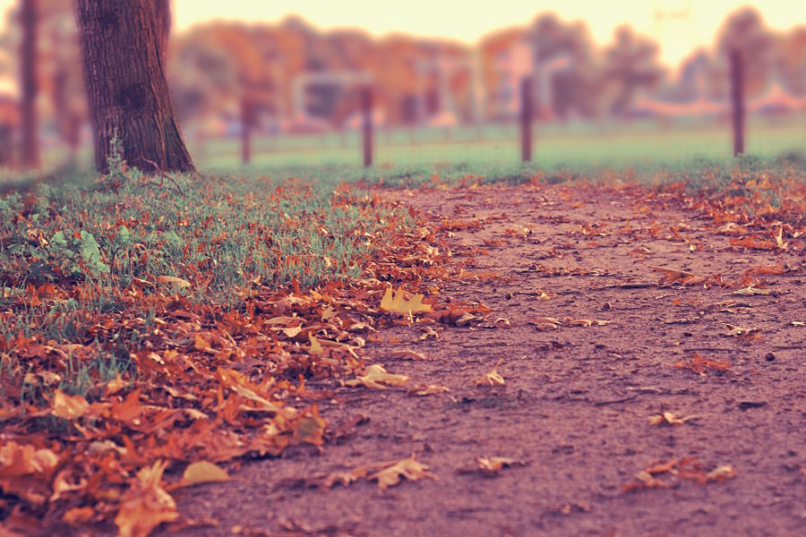 These Lyrics and Bible Verses will Transform How You See Change this Autumn
