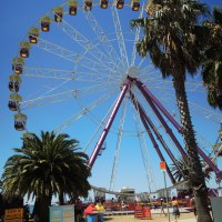 A Summer's Day in Geelong