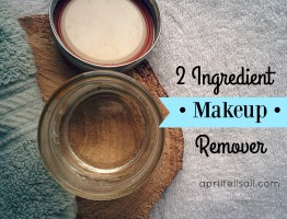 2 Ingredient Makeup Remover