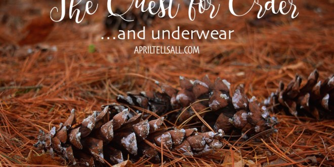 The Quest for Order….and Underwear