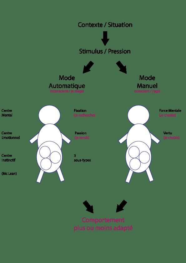 fixation et passion de l'enneagramme