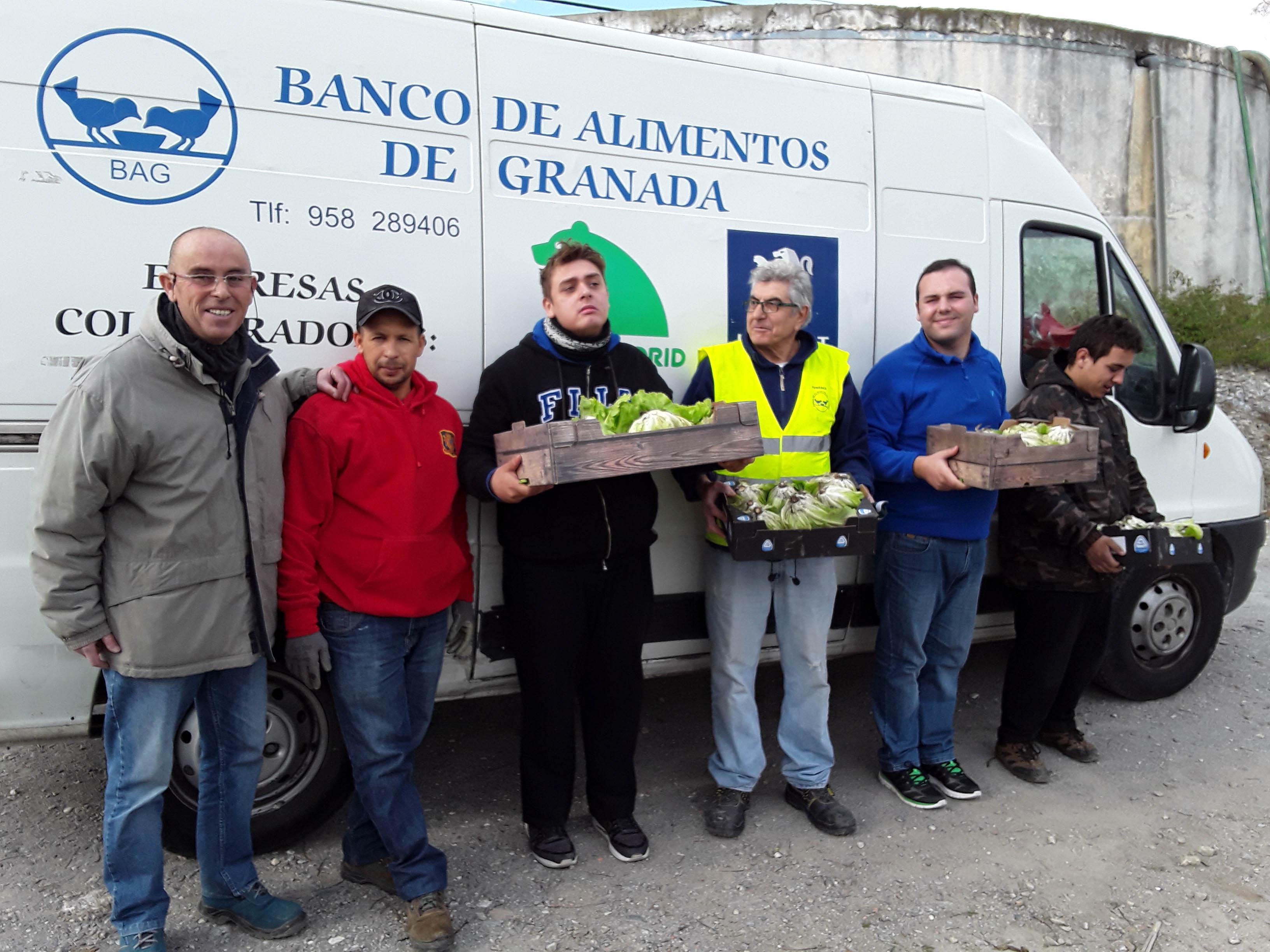 Donación de los cultivos del huerto escolar a Cáritas y comedores ...