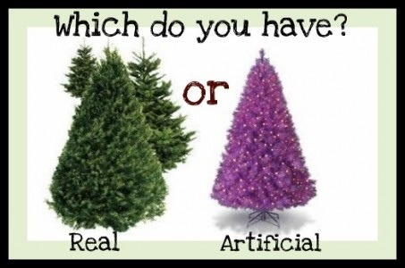 Real vs. Fake Christmas Tree