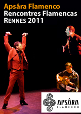 flamenco_culture_visuel_3_pt_format_-_Copie.jpg